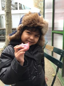 A macaroon in Bryant Park
